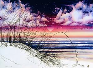 Sun Sea Odyssey